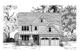 Elevation Rendering